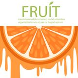 Orange fruit banner, poster with space for the text, design element for logo, farmers market, organic food vector Royalty Free Stock Photo