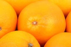 Orange fruit, close up Royalty Free Stock Photos