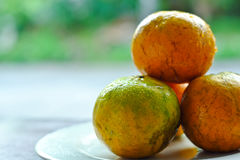 Orange fruit. Close up of some oranges in white plate over a wooden surface. Fresh fruit Stock Photography