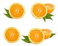Orange fruit collection. With green leaves on white Stock Image