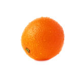 Orange fruit covered with the multiple water drops Royalty Free Stock Photo