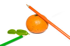 Orange fruit and crayon Stock Photography