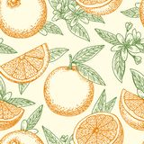 Orange fruit and flowers pattern. Orange fruit hand drawn pattern. Yellow oranges, green leaves and flowers seamless background pattern vector drawing Stock Photo