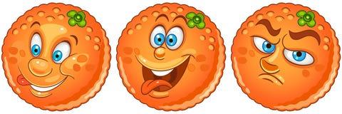 Orange. Fruit Food concept royalty free stock images