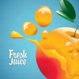 Orange fruit and fresh juice splash Royalty Free Stock Photos