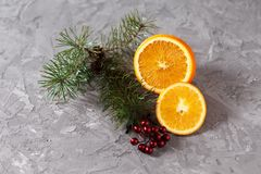 Orange fruit on a gray background with a branch of spruce stock photos