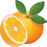 Orange, Fruit, Healthy, Juicy Stock Photography