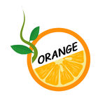 Orange Fruit icons flat style, Vector Illustration. Stock Images