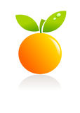 Orange fruit illustration Stock Photos