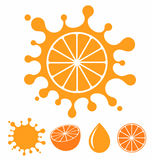 Orange. Fruit Stock Photography