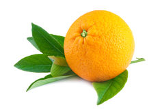 Orange fruit isolated on white Royalty Free Stock Photos