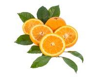 Orange fruit, Isolated on white background Royalty Free Stock Photo
