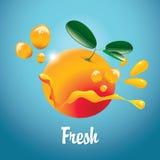 Orange fruit and juice splash Royalty Free Stock Photography