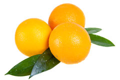 Orange fruit with leaves Royalty Free Stock Photo