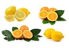 Orange fruit and lemon isolated on white background Stock Photography