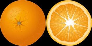 Orange, Fruit, Mandarin Stock Image