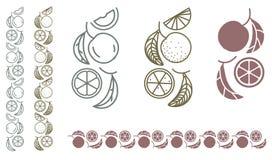 Orange fruit monochrome ornament Stock Images