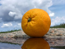 Orange fruit in the nature on a stone near water with a blue sky and clouds Royalty Free Stock Photography