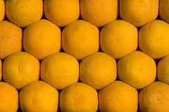 Orange fruit pattern Stock Image
