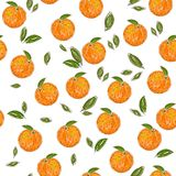 Orange fruit pattern Royalty Free Stock Photo
