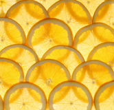 Orange fruit sliced as background Stock Photo