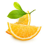 Orange fruit slices isolated. Royalty Free Stock Image