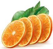 Orange fruit slices Royalty Free Stock Images