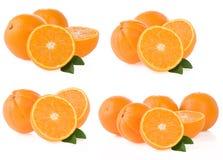 Orange fruit and slices on white. Background Stock Photography
