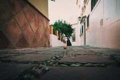 Orange fruit on stone road in Marbella town, Spain.  stock image