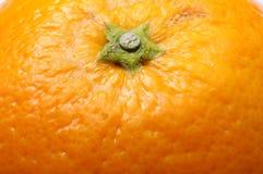Orange fruit texture Stock Images