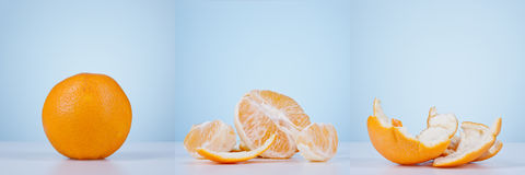 Orange fruit triptych Royalty Free Stock Photos