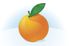 Orange fruit vector. Stylised orange fruit on light blue background Royalty Free Stock Image
