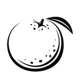 Orange fruit. Vector black contour drawing. Royalty Free Stock Image