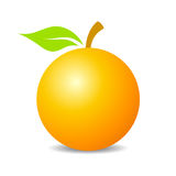 Orange fruit vector icon Stock Images