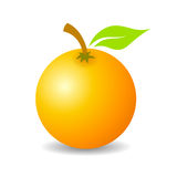 Orange fruit vector icon Stock Photos