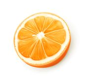Orange fruit  vector Royalty Free Stock Photography