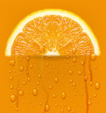 Orange fruit with water drops background. Royalty Free Stock Photo