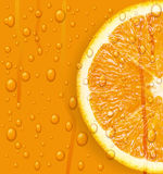 Orange fruit with water drops background. Royalty Free Stock Image