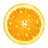 Orange fruit with water drops Stock Photo