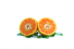 Orange fruit on white background Stock Photography