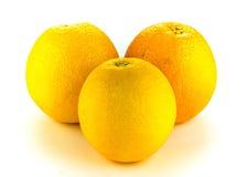 Orange fruit on white background. Stock Image