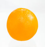 The orange fruit. Stock Images