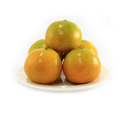 Orange fruitit Royalty Free Stock Images