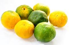 Orange fruits Royalty Free Stock Image