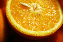 Orange fruits. Fresh cut orange fruits royalty free stock photo