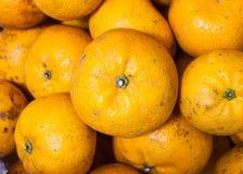 Orange fruits background Royalty Free Stock Image
