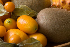 Orange fruits compostion Stock Images