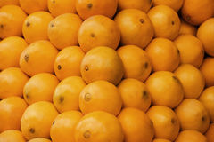 Orange Fruits Crop Stock Images