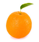 Orange fruits with green leaves Stock Photography