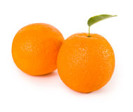 Orange fruits with green leaves Royalty Free Stock Photo
